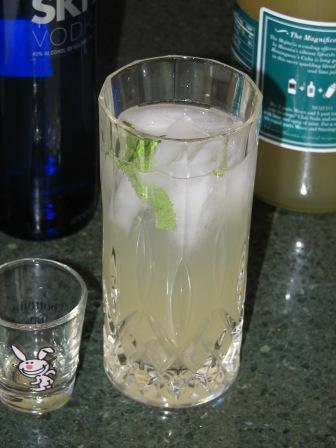 IC1 vodkajito