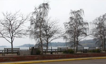 Bookcase lake