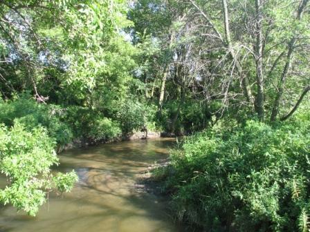 Walnut grove plum creek