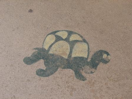 Nisswa turtle
