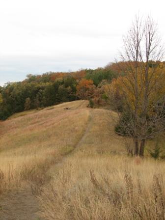 Rta trail
