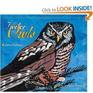 12 owls