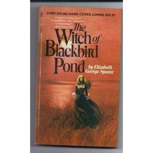 Blackbird pond