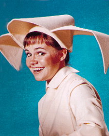 The_flying_nun
