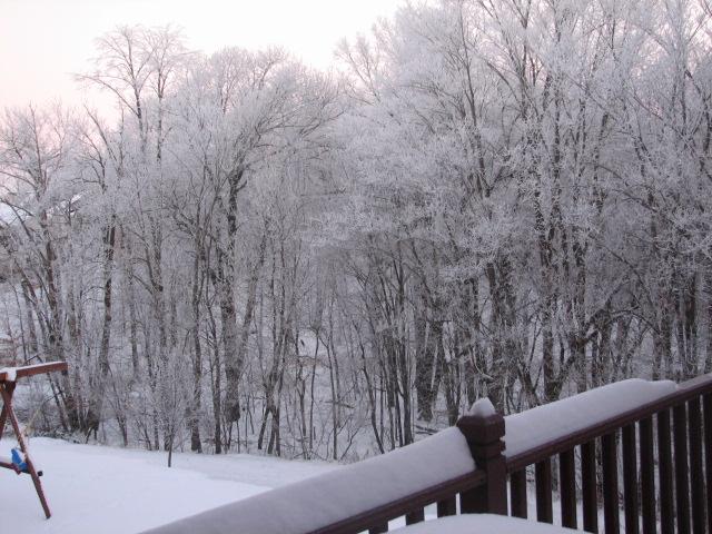 Snow_12_07