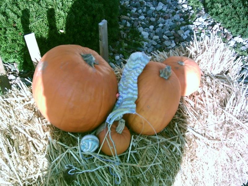 Pumpkins_sock